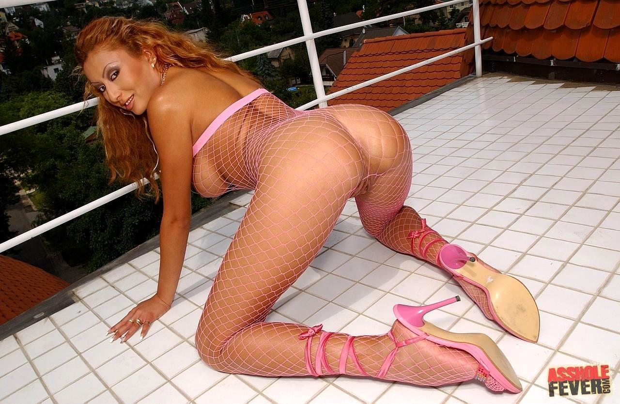 Niki wylde nude pornstar search