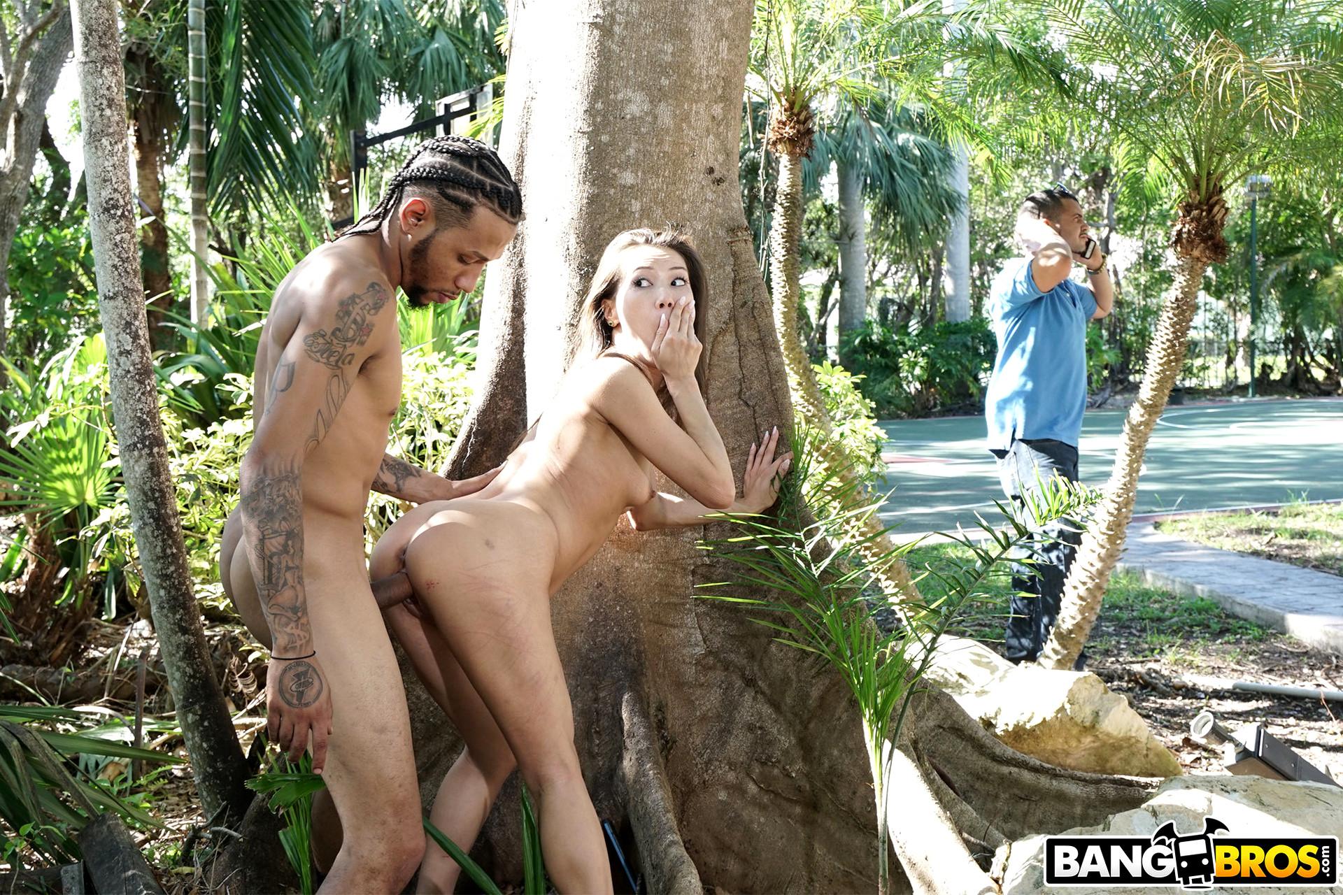 XXX Jungle Pics, XXX Jungle Galery, Jungle Sex Images