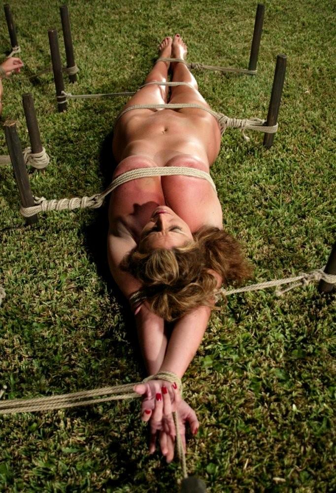sexy women ass spread pussy