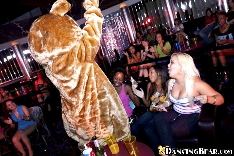 Dancing bear pass-3586