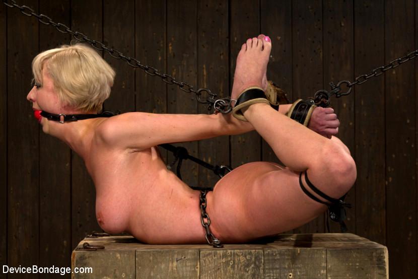 Remarkable, free erotic bondage pics