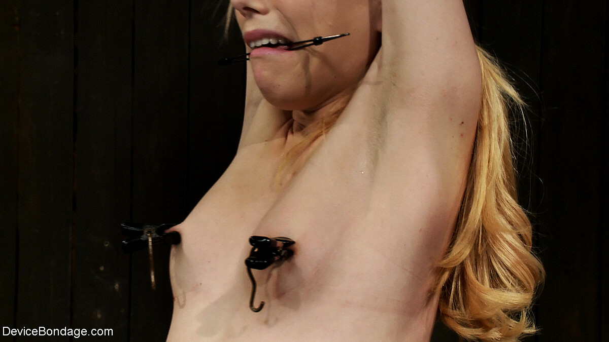 BDSM sub emma haize torment with clamps on gotporn
