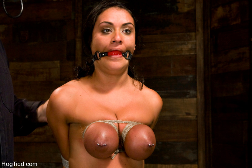 Babe Today Hogtied Charley Chase Various Suspension -8947