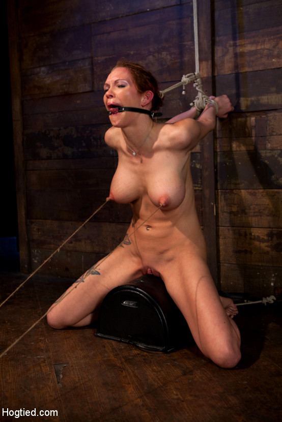 porn-xxx-sybian-bondage-pics-nude-gallery-hot