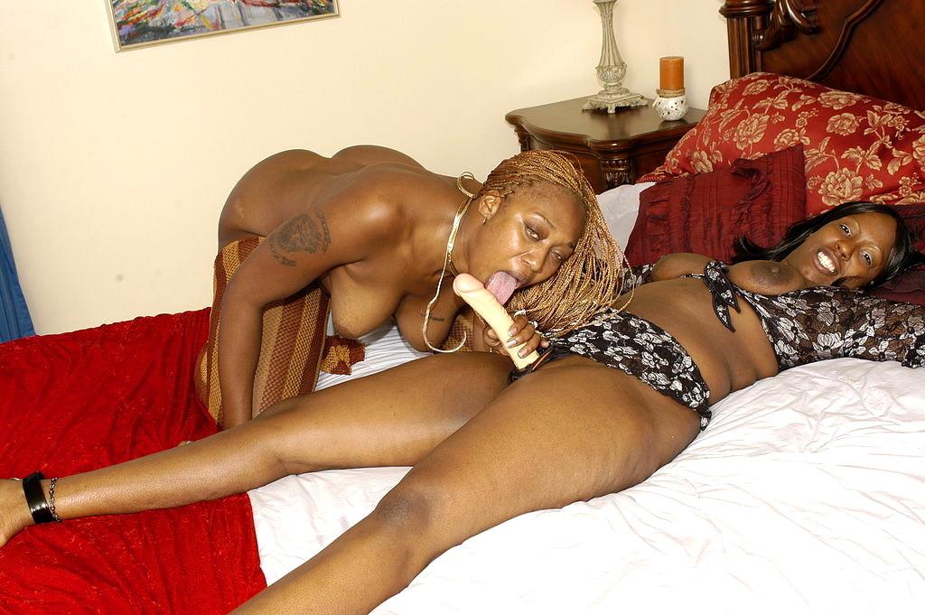 chocolate stallion porn