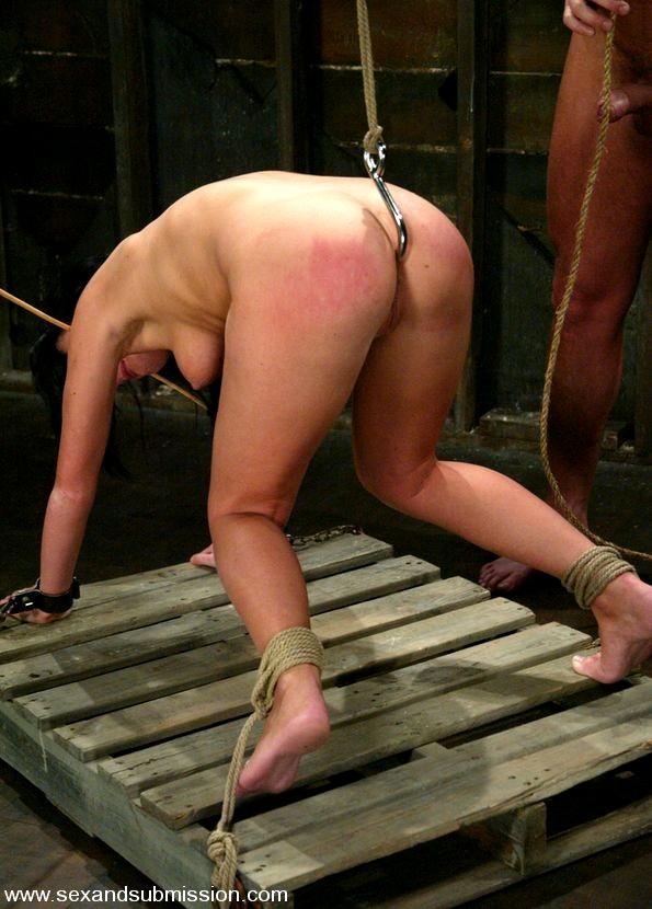 Смотреть порно жесткое с поркой плетьми и прищепками