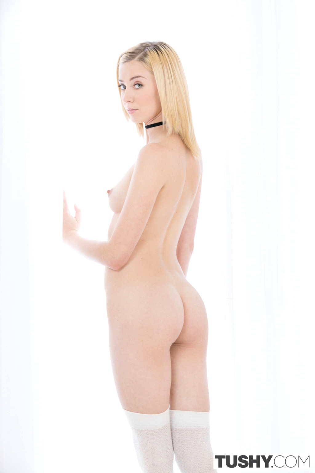 haley reed hd porn