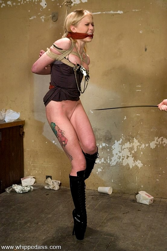 Bdsm photos and free download