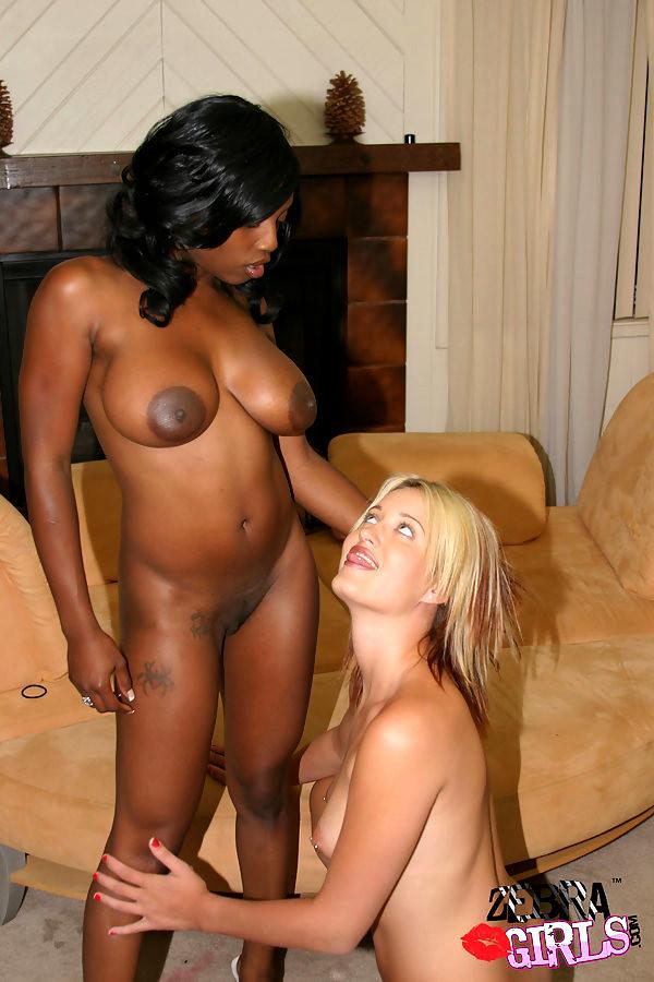 Black Ebony Interracial Captions Pornhd8k 1