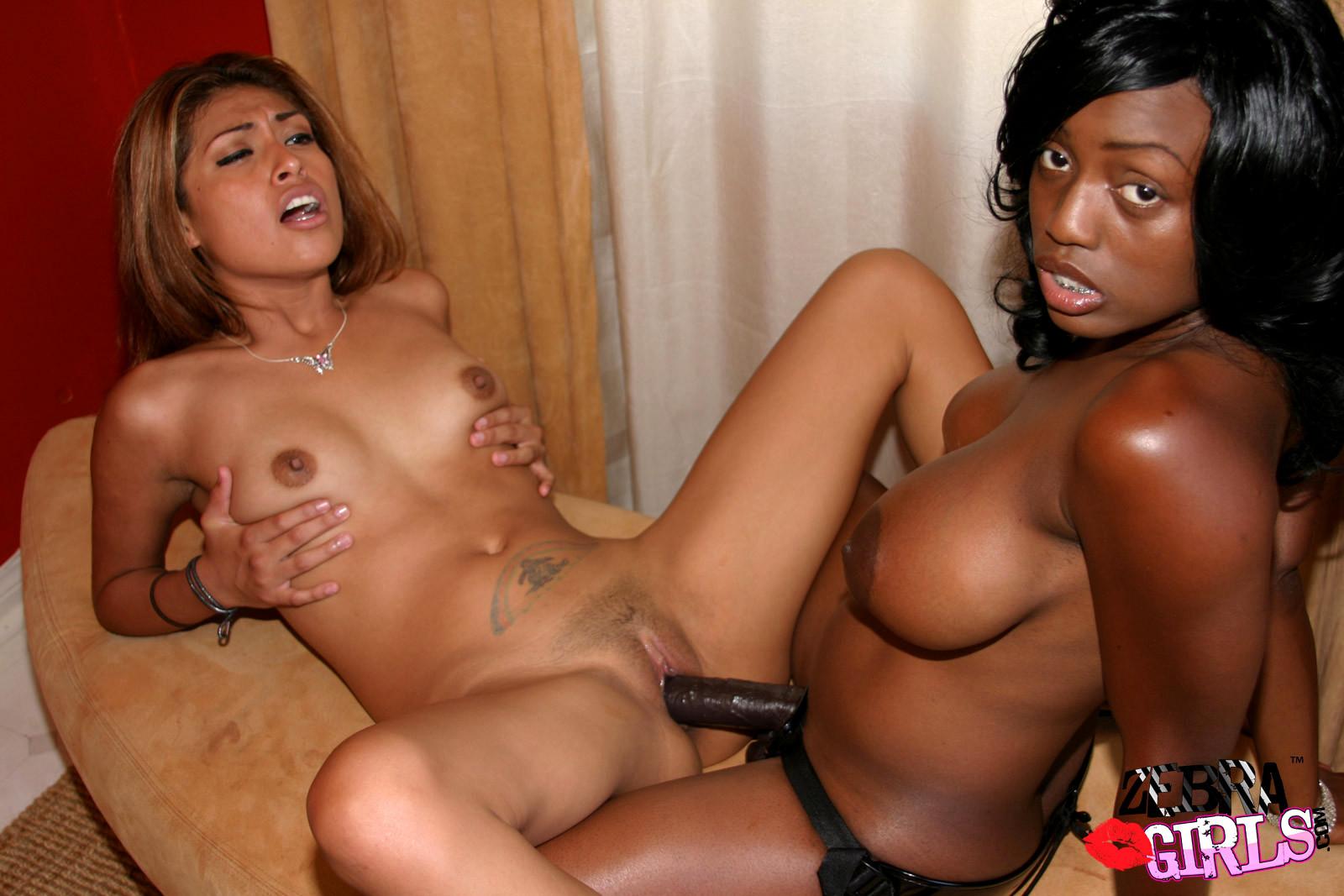 Babe Today Zebra Girls Jada Fire Hq Lesbian Vip Tube Porn Pics-6487